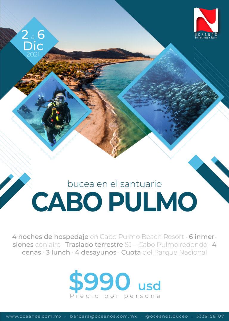 Expedición Cabo Pulmo - Oceanos Expediciones y Buceo